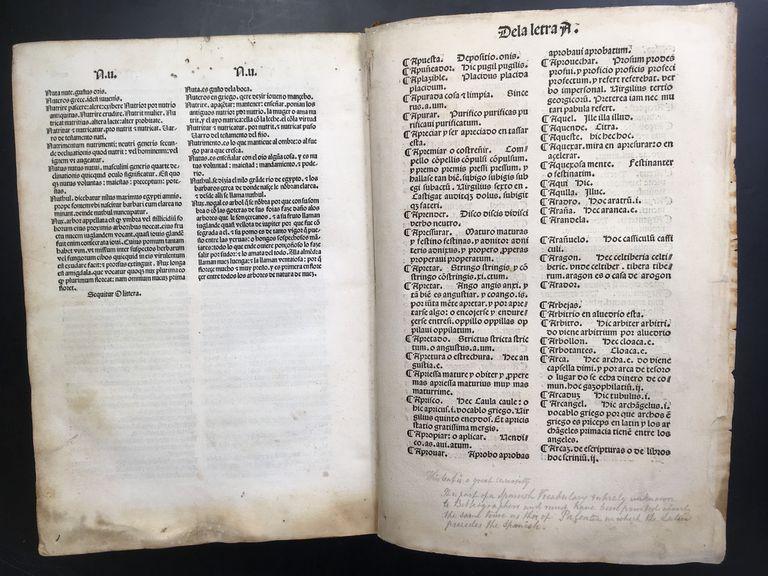 una-investigadora-argentina-identifica-al-autor-del-primer-diccionario-castellano
